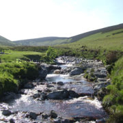 Wicklow Stream no border