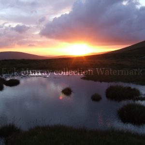Wicklow evening stream with no boarder