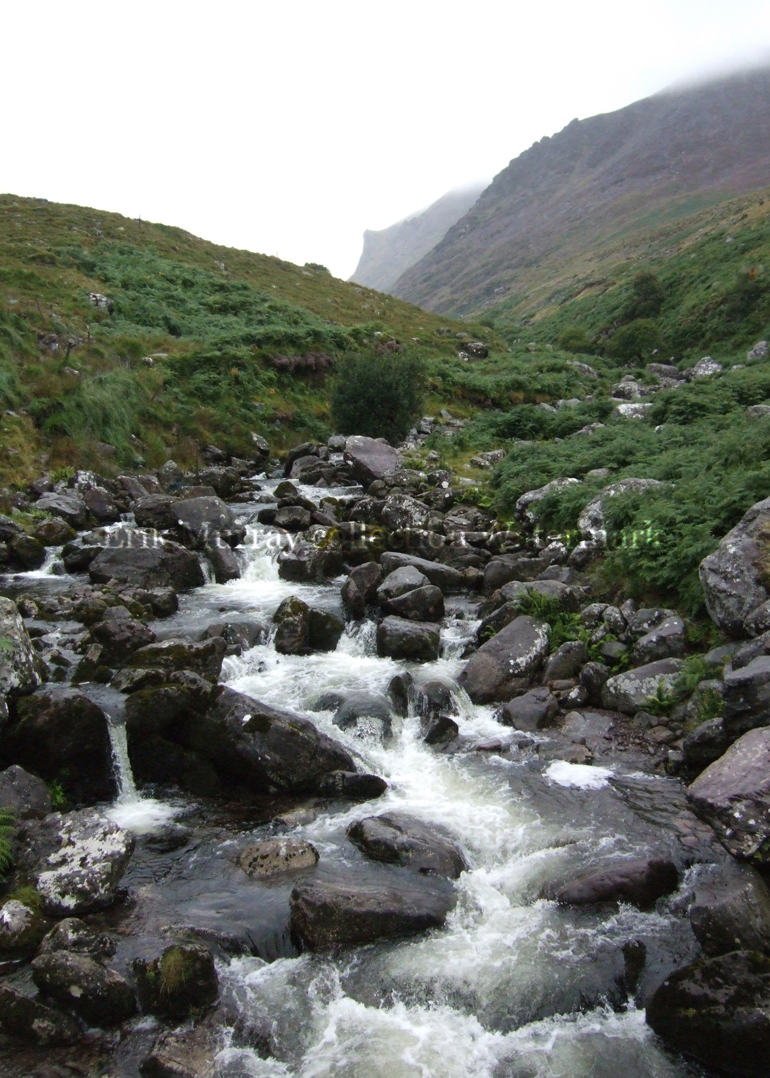 Carrauntoohil Stream 2014 no boarder & signature