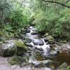 Killarney stream no boarder