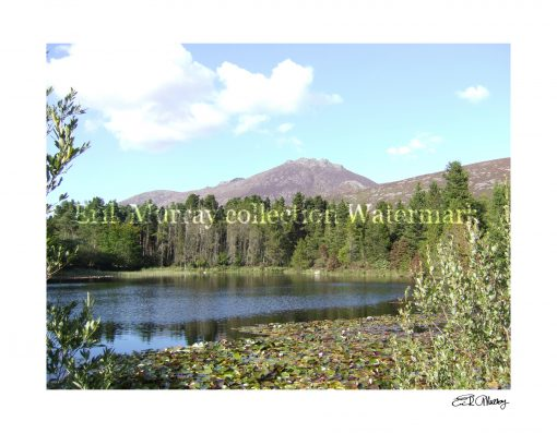 Mourne Mountains with boarder & signature