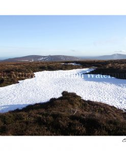 Wicklow Mountains Snow 2010 no boarder